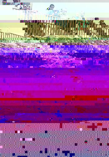 Essay environment pollution